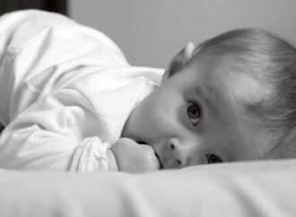 Diretamente dos Estados Unidos à Uberlândia curso sobre linguagem e comportamento dos bebês