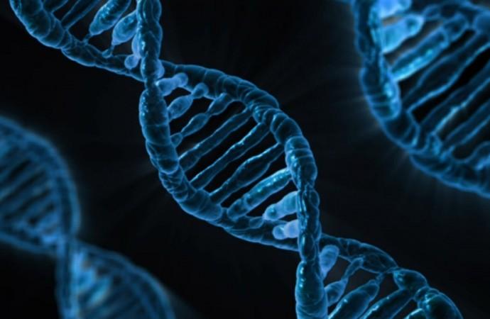 Herança genética x hábitos de vida