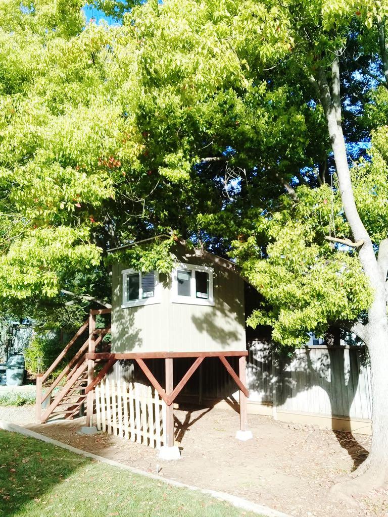 Casa na árvore feira por Franklin nos EAU
