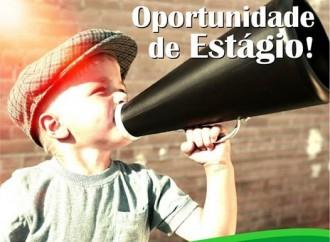 Atenção: Earth Brasil tem duas vagas de estágio abertas!