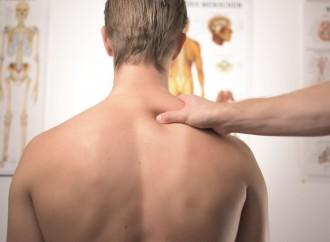 Oito em cada 10 pessoas sofrem com dores nas costas
